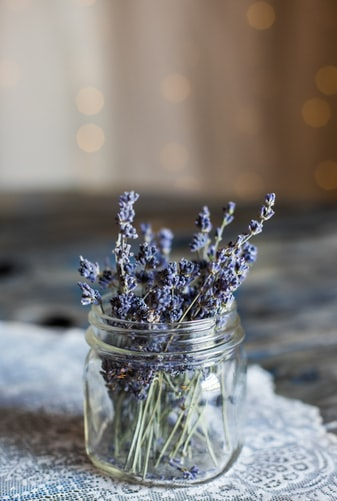 What Lavender Oil Good for